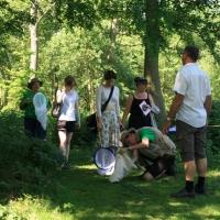 Bi-safari i Kulturbotanisk Have i Odense, 5. juni 2016