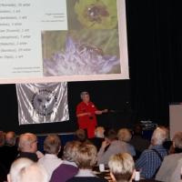 Oplæg ved Biavlerkonferencen i Vejle, 5. marts 2016.