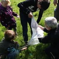 Bi-blitz for børn på Skamlingsbanken ved Kolding, 20. juni 2015