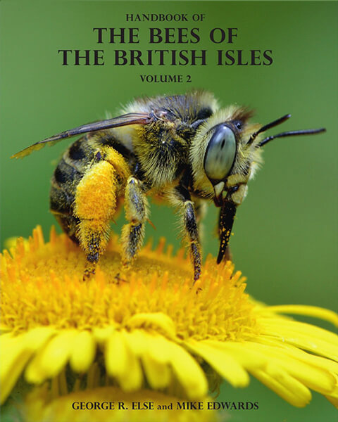 Handbook of the Bees of the British Isles - vol. 2