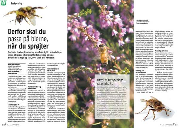 Derfor skal du passe på bierne, når du sprøjter, Frøavleren 3/2013