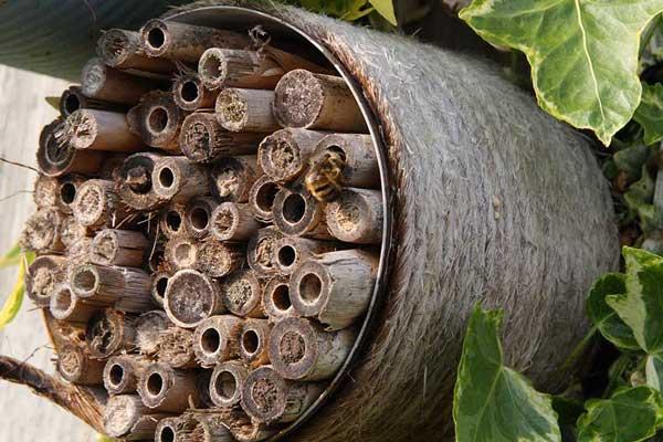 Et simpel hus til havens enlige bier