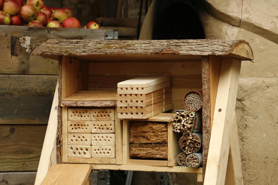 Læstativ med udskiftelige redemoduler til enlige bier. Foto: © Veronica Bay