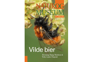 Vilde bier - Natur og Museum 2013