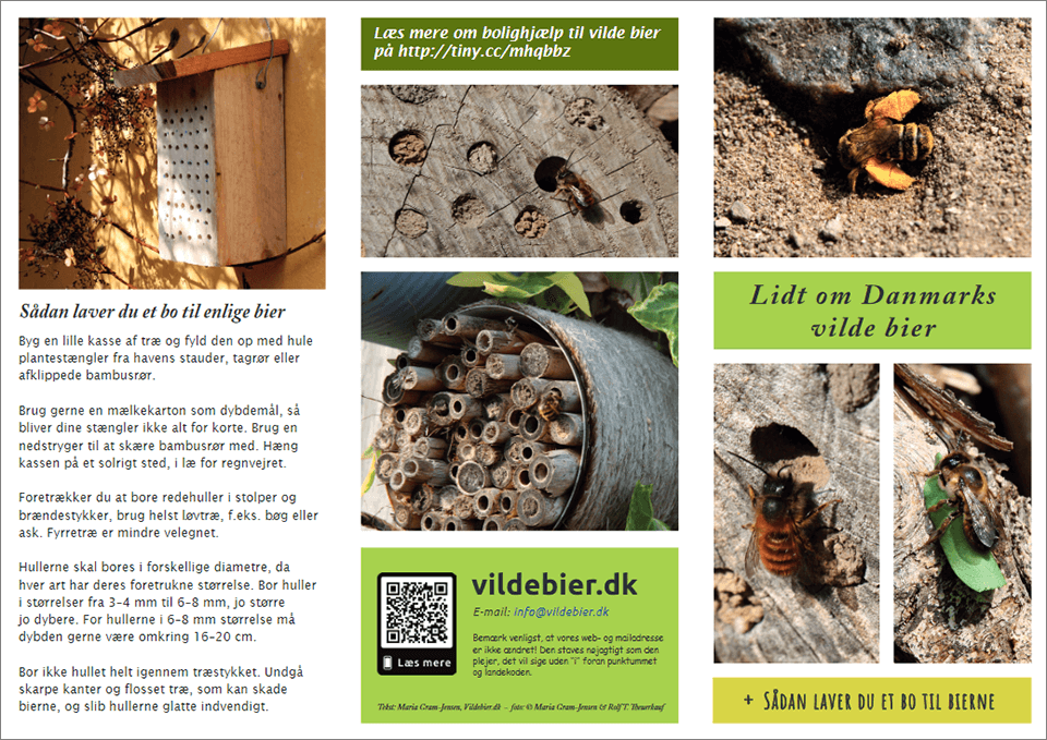 Lidt om Danmarks vilde bier (side 1)