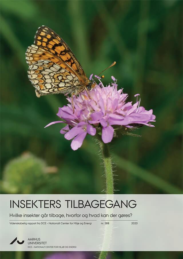 Insekters tilbagegang. Hvilke insekter går tilbage, hvorfor og hvad kan der gøres? Aarhus Universitet