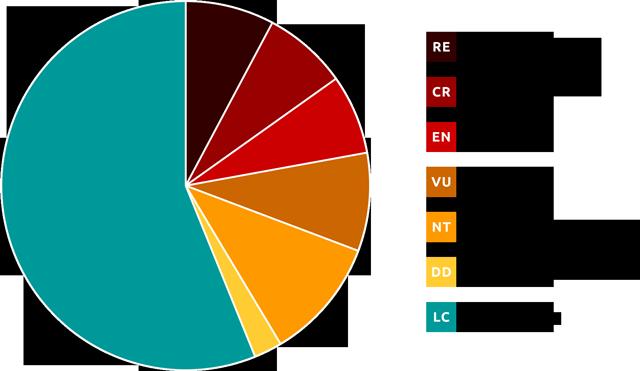 Rødliste, cirkeldiagram med fordeling af kategorier gældende for de vurderede biarter