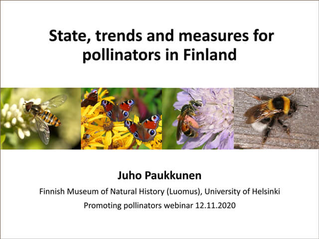 Presentation by Juho Paukunnen, Finland