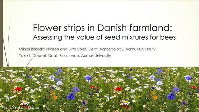 Presentation by Yoko Luise Dupont, Denmark