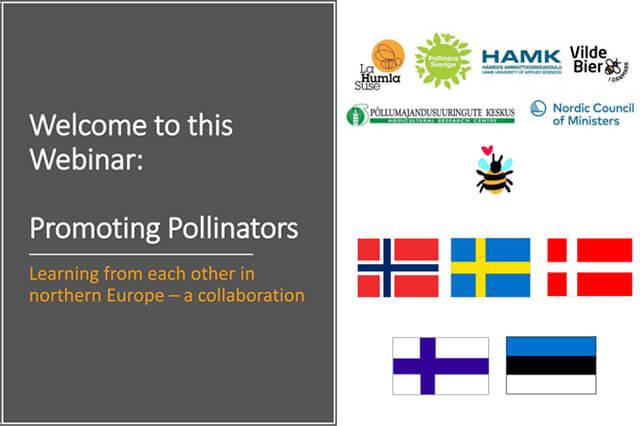 Se materiale fra Promoting pollinators, nordisk webinar om bestøvere