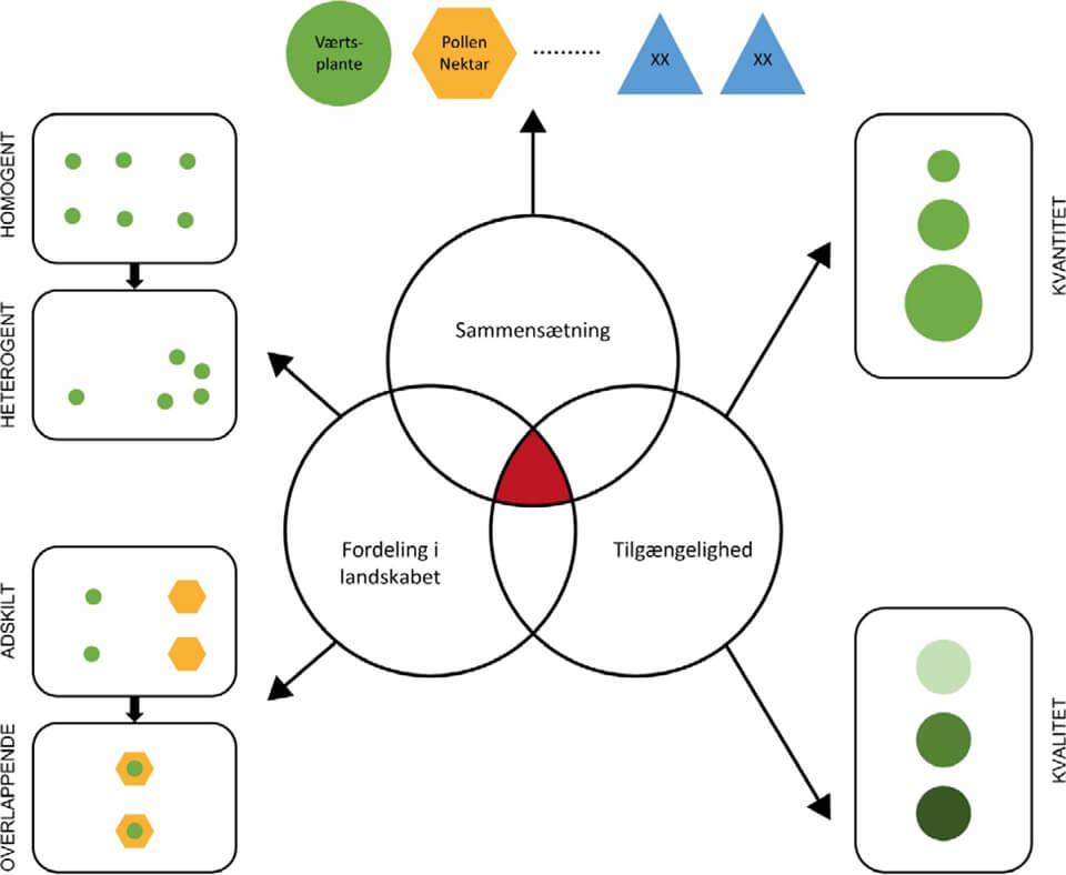 Ressourcehabitatet og betydningen af sammensætning, fordeling i landskabet og tilgængelighed