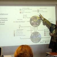 Beate Strandberg, Aarhus Universitet, Institut for Bioscience