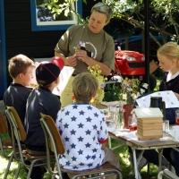 Sommersjov med bier og blomster, Pejrup, Fyn, sommerferien 2011