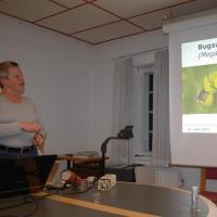 Foredrag for Hørsholm og Omegns Biavlerforening, 20. marts 2013