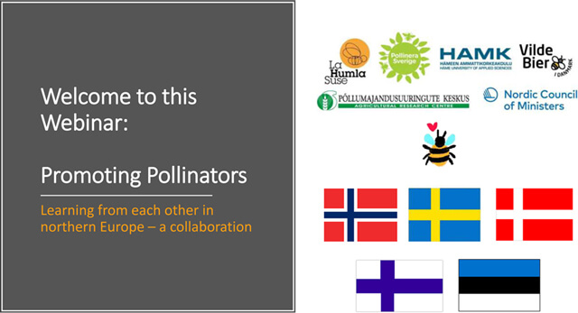 Promoting pollinators, webinar 12th November 2020